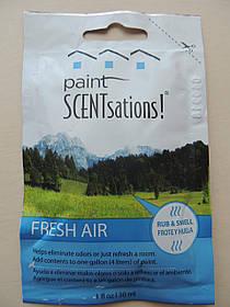Paint SCENTsations ароматизована добавка до фарби Fresh Air (Свіжість);