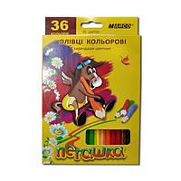 Цветные карандаши Marco Пегашка 36 цв