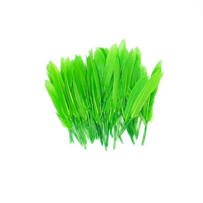 Перья зеленые 10-15 см 50шт