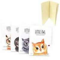 "Блокнот LB36K10-2583 ""Little Owl"" 12.4x16.8см 96листов 80г/м2 (5548)"