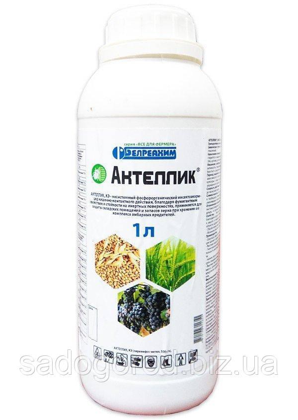 Актеллик 1 литр