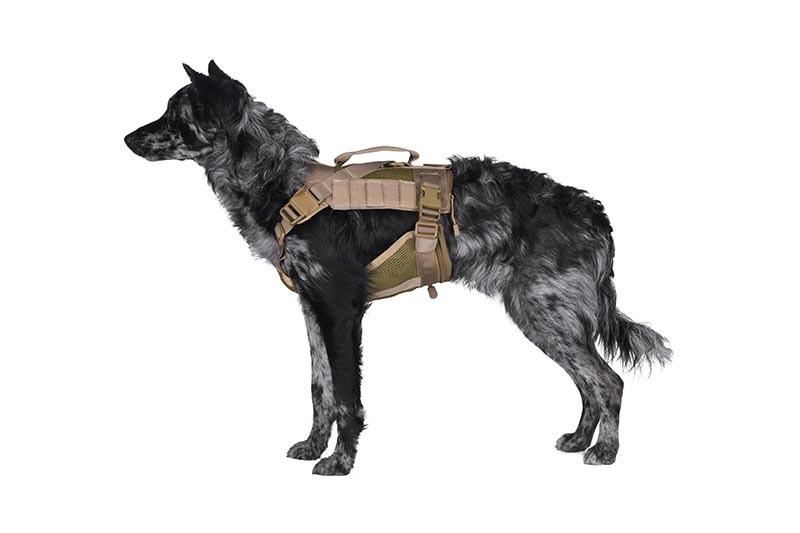 Szelki taktyczne dla psa - tan [Primal Gear]