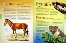 Жизнь животных   Брем А ., фото 3