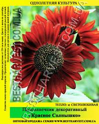 Семена Подсолнечник декоративный «Красное Солнышко» 50 г