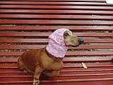 Зимняя шапка для маленькой собаки,шапка для собаки, фото 5