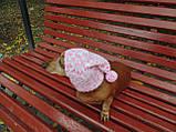Зимняя шапка для маленькой собаки,шапка для собаки, фото 3