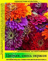 Семена цветов «Цинния» смесь окрасок 50 г
