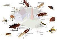 Средства от насекомых и вредителей