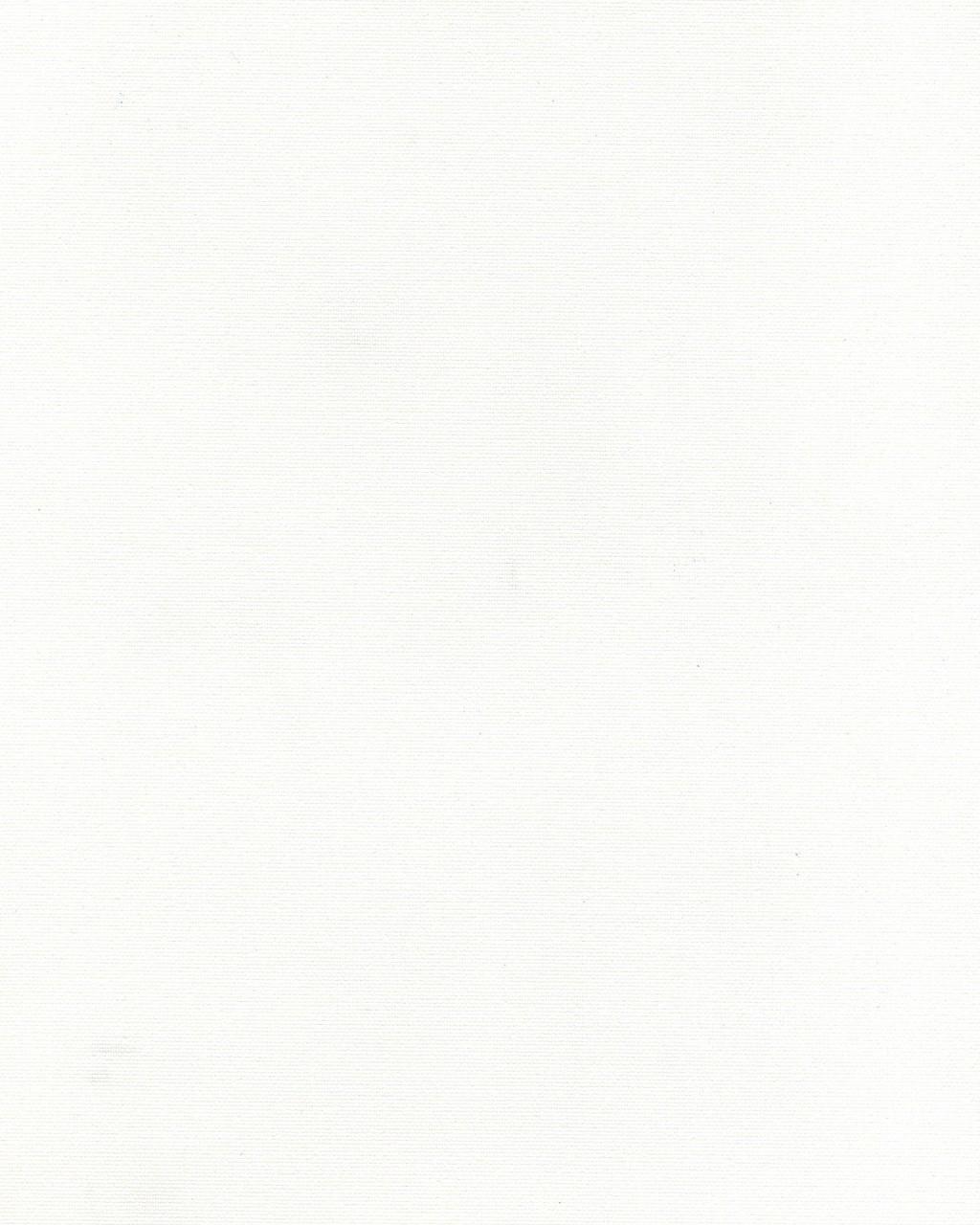 Тканевая ролета Ара 1000 белая, 100*170 см