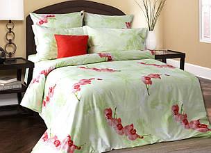 Комплект постельного белья двуспальный БЛЕСК САЛАТОВЫЙ (нав. 70*70)