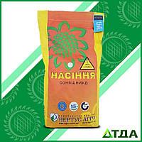 Семена подсолнечника НС-Х-496 Элит