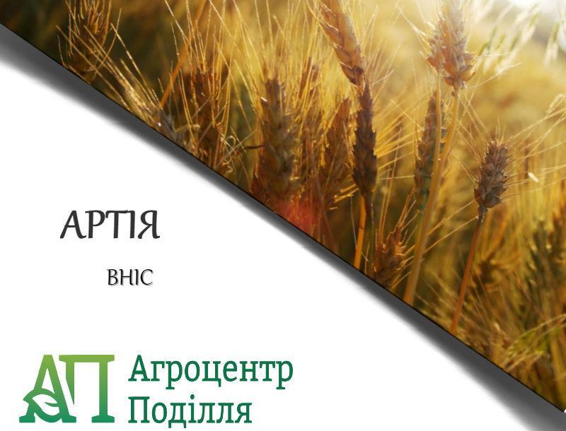 Озимая пшеница Артия, ВНИС