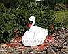 Садовая фигура Лебедь шипун белый, фото 4