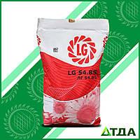Семена подсолнечника ЛГ 5485 Круизер