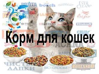 Корм для кішок