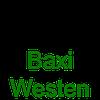 Запчасти к газовым котлам BAXI,WESTEN