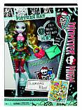 Кукла Monster High Лагуна Блю День фотографии - Picture Day Lagoona Blue, фото 3