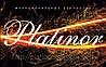 """Platinor-Ukraine"""