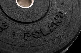 Бамперный диск Rekord 10 кг (BP-10), фото 3