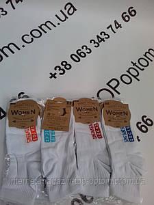Шкарпетки  хлопок лікра  39-42