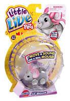 Інтерактивна мишка Little Live Pets Lil Mouse, фото 1