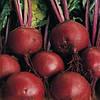Семена свеклы Бонел 1 кг. Hazera