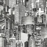 Шпалери паперові Ексклюзив 057-01 чорно-білий, фото 1
