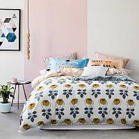 Комплект постельного белья Сад роз (двуспальный-евро)
