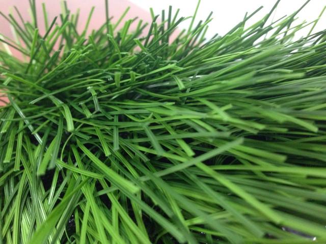 искусственная трава фото