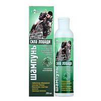 """Шампунь для окрашенных и мелированных волос с экстрактом листьев баобаба """"Сила лошади""""  250 мл"""