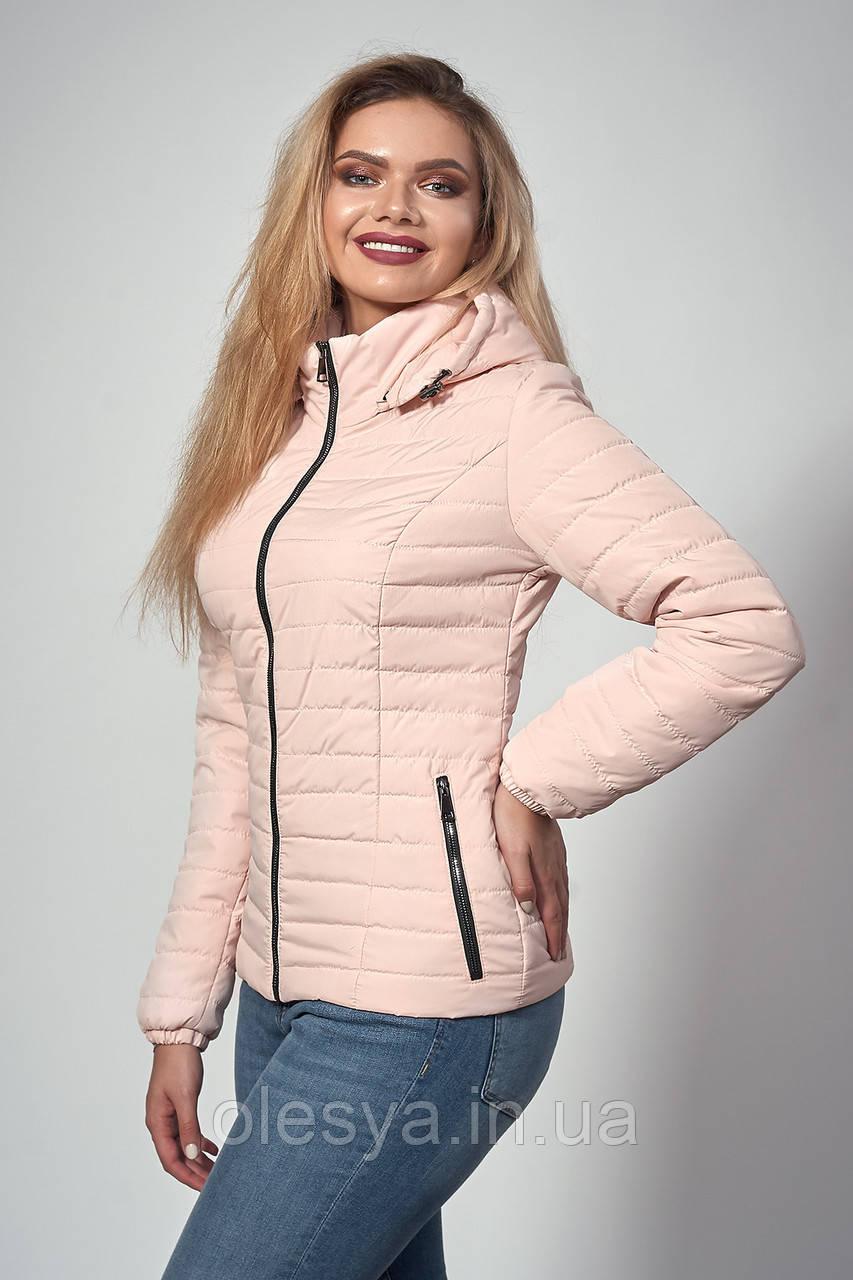Женская демисезонная куртка. Код модели К-115-37-18. Цвет пудра.Размер 42