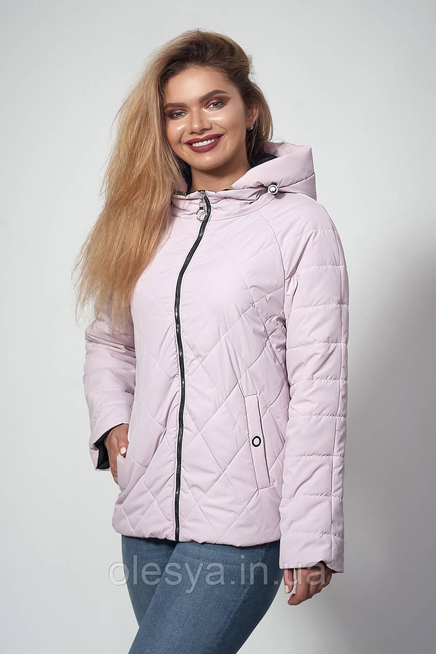 Женская демисезонная куртка. Код модели К-120-37-18. Цвет пудра.