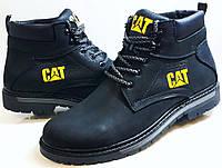 Ботинки зимние мужские кожаные CAT model - B170  black Польша