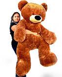 Большой медведь, плюшевый мишка 180см., фото 7