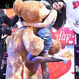 Большой медведь, плюшевый мишка 180см., фото 4