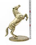 Старая скульптура, конь, лошадь, латунь, Англия, 25 см, фото 8