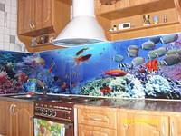 рабочая стенка кухни из стекла. Купить или заказать рабочую стенку кухни из стекла в Киеве можно по телефону или по эл. почте. Рисунок на стекле - любой