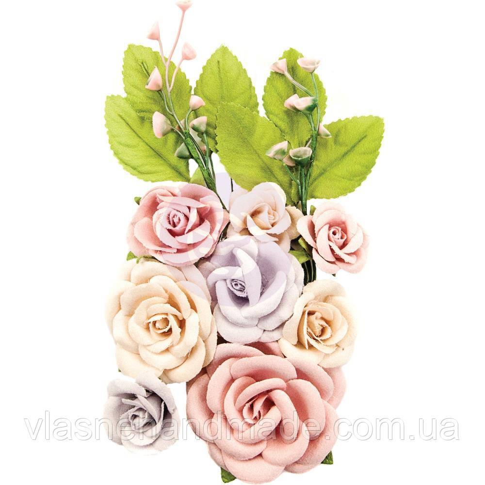Квіти - Provincial Garden - Lavender Frost - Prima Marketing - 10 шт.