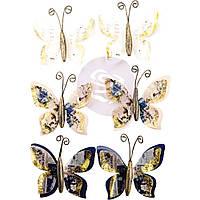 Квіти (метелики)- Warren - Georgia Blues - Prima Marketing - 6 шт.