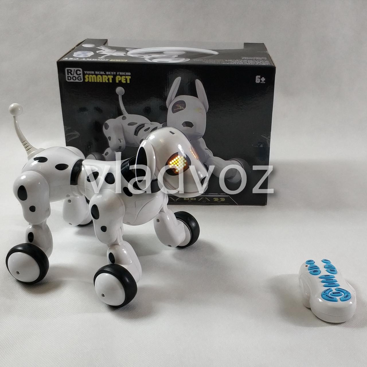 фото коробки интерактивной игрушки собака щенок робот Smart pet