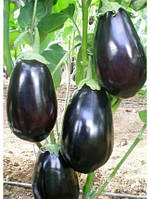 Семена баклажана Визир F1 (500семян) Yuksel, Турция