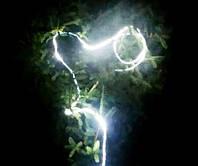 Новогодняя Цифровая Светодиодная  Белый свет влагозащищенная лента Бегущие огни, Бегущая волна,  бегущего свет