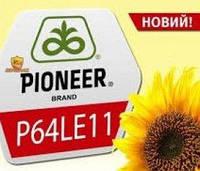 Семена подсолнечника Pioneer P64LE11, фото 1
