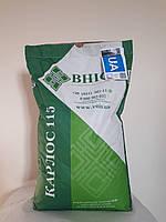 Семена подсолнечника Карлос 115 ВНИС под Евролайтинг