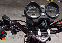 Мотоцикл HORNET Alpha 125 куб. см, мокрий асфальт, фото 3