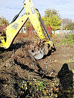Очистка участка от деревьев. Уборка территории. Демонтаж, фото 1