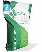 Семена подсолнечника Карлос 105 под Евролайтинг ВНИС Экстра