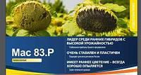 Семена подсолнечника Maїsadour Mas 83.R