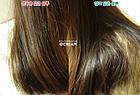 Шампунь с экстрактом аира против перхоти и для блеска волос AMOREPACIFIC RYOE Calamus Scalp&Shining Shampoo, фото 5