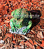 Садова фігура Жаба болотяна, фото 3